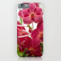 Pink Orchids iPhone 6 Slim Case