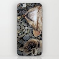 Ecstatic Cat iPhone & iPod Skin