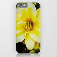 iPhone & iPod Case featuring Slow Wilting Beauty by Jillian Michele