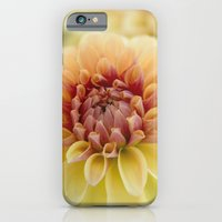 iPhone & iPod Case featuring Harmony by Kim Hojnacki Photography
