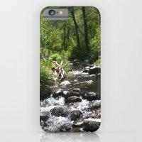 iPhone & iPod Case featuring Oak Creek by Amy K. Nichols