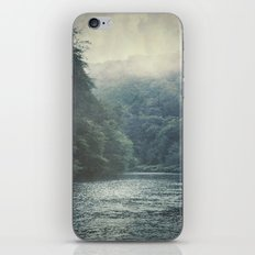 valley and river iPhone & iPod Skin