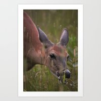 A Doe Eyed Lady Art Print