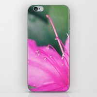 Center of It All iPhone & iPod Skin