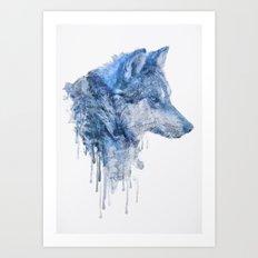 Loup Art Print