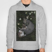 Sleep [A CAT AND A KITTE… Hoody