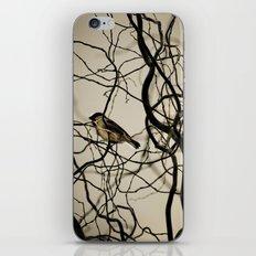 Lonely Bird... iPhone & iPod Skin