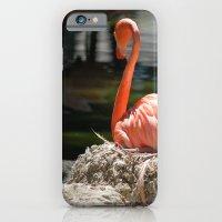 Sitting Flamingo iPhone 6 Slim Case