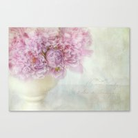 dreamy peonies Canvas Print