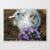 Sylvie Naps With The Cro… Canvas Print