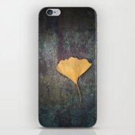 Ginkgo Leaf iPhone & iPod Skin