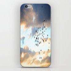 Don't Break Formation iPhone & iPod Skin