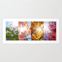 Autumn's Glory Art Print