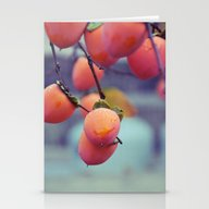 Persimmons In The Rain Stationery Cards