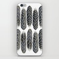 Black Stripe Feathers iPhone & iPod Skin