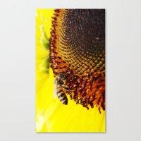 Busybee Canvas Print