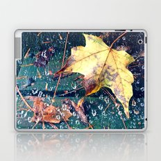 Fall in the Spider's Web Laptop & iPad Skin