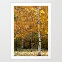 Autumn 72516 Art Print