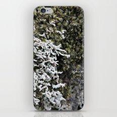 Moss 2 iPhone & iPod Skin