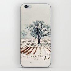 Winter Farm iPhone & iPod Skin