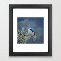 Tree Swallow Framed Art Print