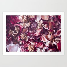 Dried fruits and leaves. Art Print