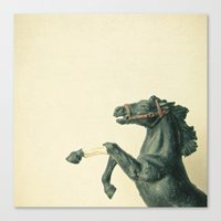 The Black Horse Canvas Print