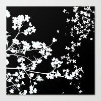 Black Dogwood Canvas Print