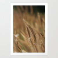 I Love Grass. Art Print