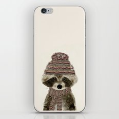 little indy raccoon iPhone & iPod Skin