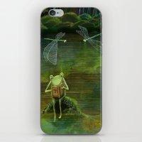 Frog on his Rock iPhone & iPod Skin