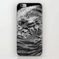Tiger Cub 2 iPhone & iPod Skin