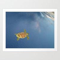 Hawksbill Swimming In Th… Art Print