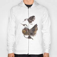 Rad's Hummingbirds Hoody