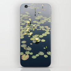 Garfield Park Conservatory iPhone & iPod Skin