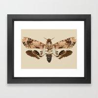 Acherontia Lachesis Framed Art Print