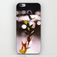 Vixen iPhone & iPod Skin
