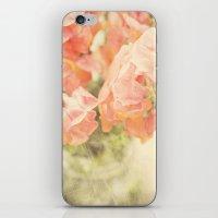 Peach bunch iPhone & iPod Skin