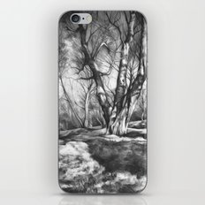 Musing of Trees iPhone & iPod Skin