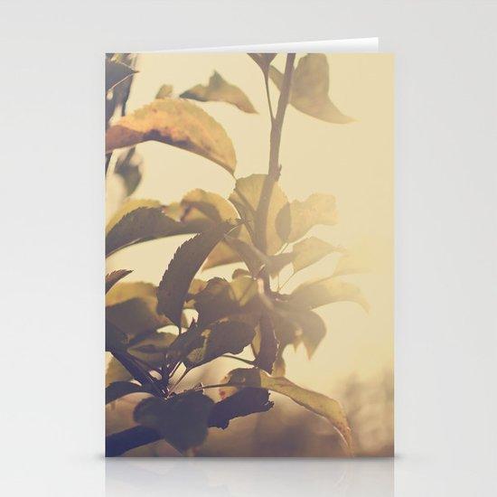 Fall Sun Stationery Card