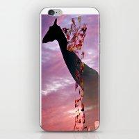 Goodnight Giraffes iPhone & iPod Skin