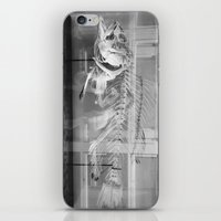 Fish Skeleton - Harvard … iPhone & iPod Skin