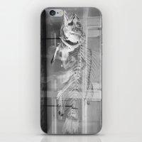 Fish Skeleton - Harvard Museum of Natural History iPhone & iPod Skin