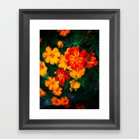Colorful Flowers Framed Art Print