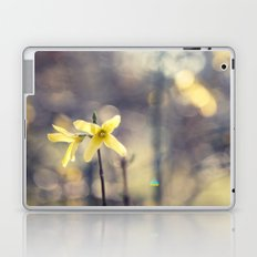 Garden: end of winter Laptop & iPad Skin