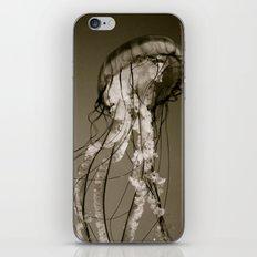 Jellyfish B&W iPhone & iPod Skin