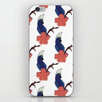 Parrot Boys  iPhone & iPod Skin