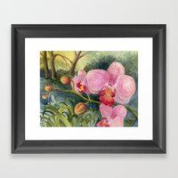 Orchid Beauty Framed Art Print