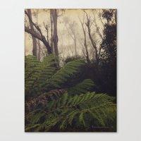 Rainforest No.11 Canvas Print