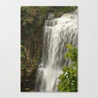 Webster Falls, Hamilton,… Canvas Print
